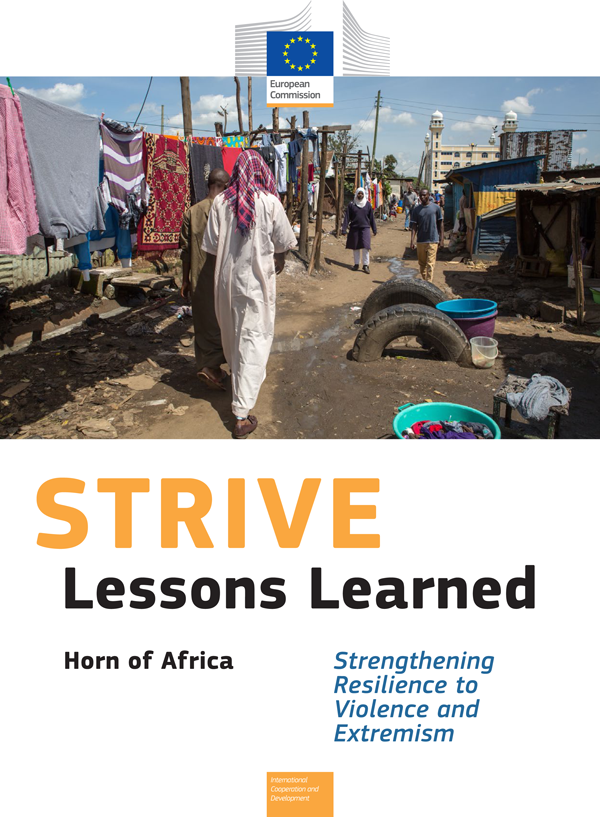 STRIVE - Lessons Learned Report